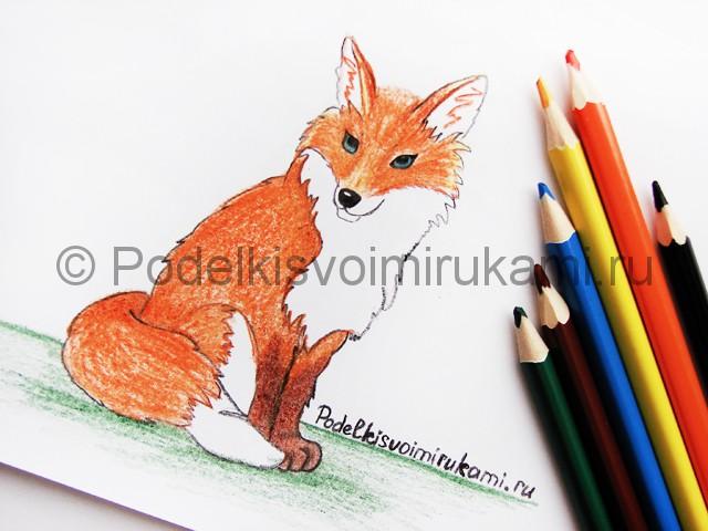 Рисуем лису цветными карандашами - фото 24.