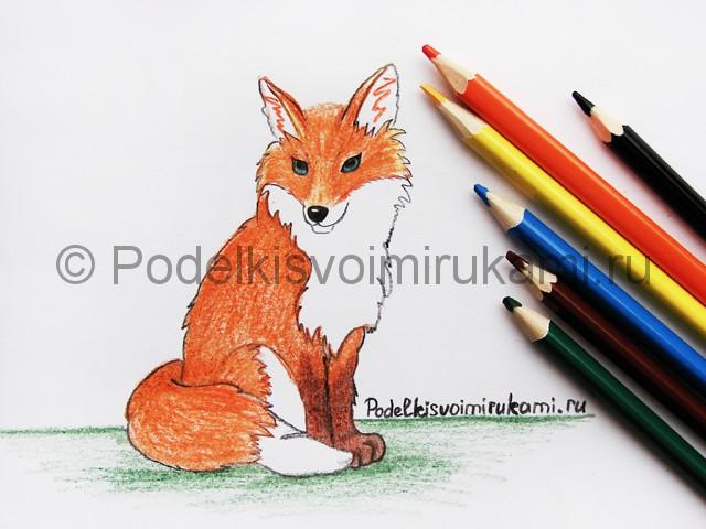 Рисуем лису цветными карандашами - фото 25.