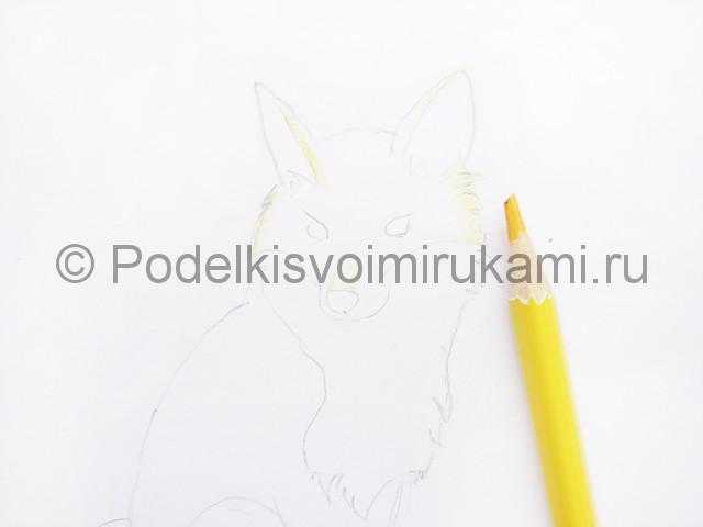 Рисуем лису цветными карандашами - фото 5.