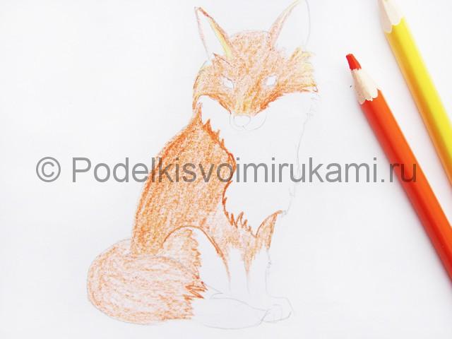 Рисуем лису цветными карандашами - фото 6.