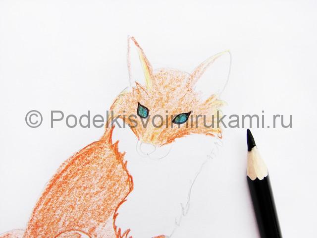 Рисуем лису цветными карандашами - фото 8.