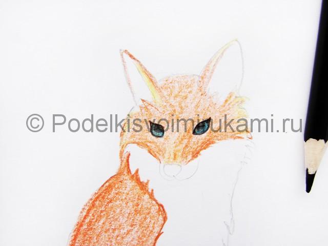 Рисуем лису цветными карандашами - фото 9.