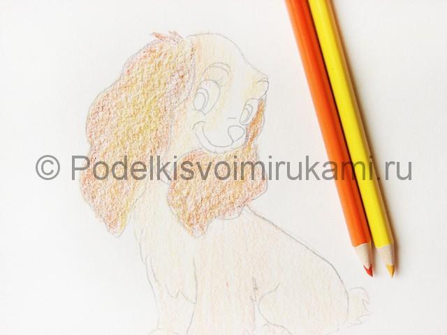 Рисуем собаку цветными карандашами - фото 11.