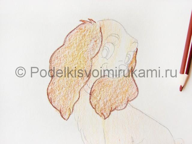 Рисуем собаку цветными карандашами - фото 13.