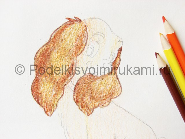 Рисуем собаку цветными карандашами - фото 14.