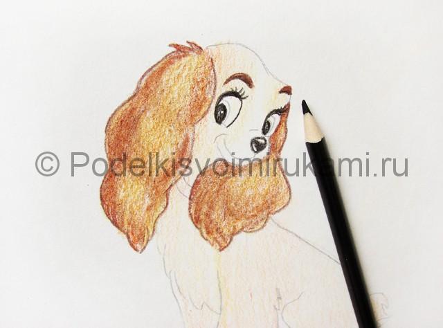 Рисуем собаку цветными карандашами - фото 15.
