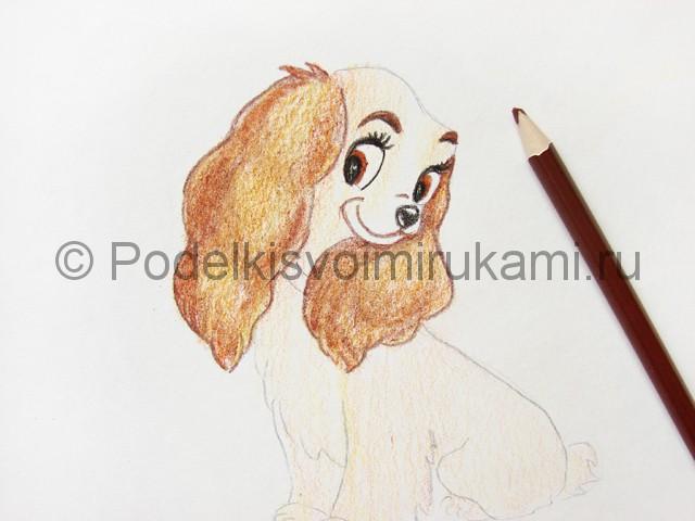 Рисуем собаку цветными карандашами - фото 16.