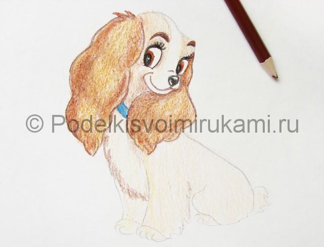 Рисуем собаку цветными карандашами - фото 17.