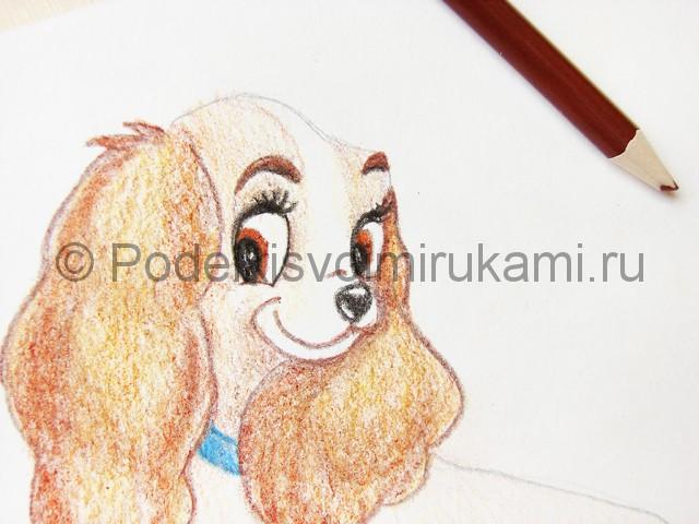 Рисуем собаку цветными карандашами - фото 18.
