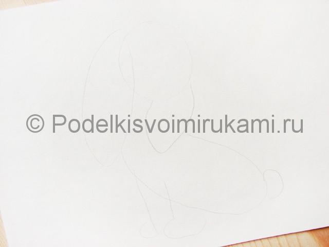 Рисуем собаку цветными карандашами - фото 2.