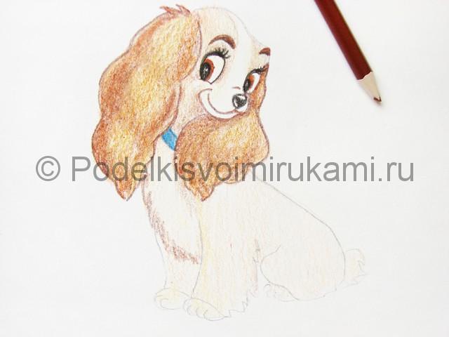 Рисуем собаку цветными карандашами - фото 20.
