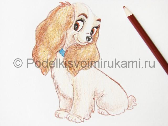 Рисуем собаку цветными карандашами - фото 21.