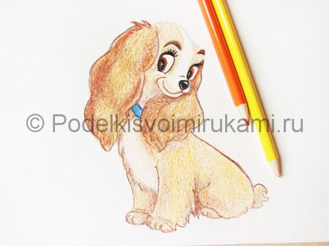 Рисуем собаку цветными карандашами - фото 22.