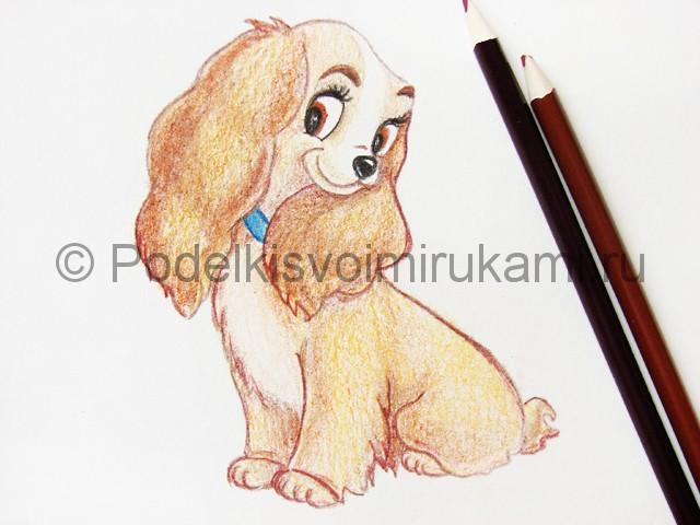 Рисуем собаку цветными карандашами - фото 23.