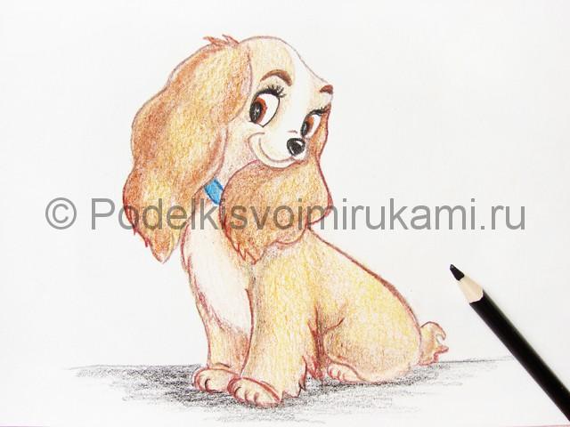 Рисуем собаку цветными карандашами - фото 24.