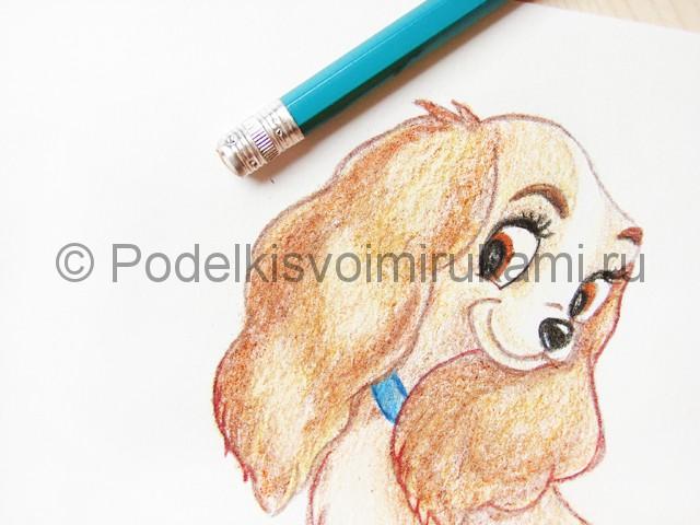 Рисуем собаку цветными карандашами - фото 25.