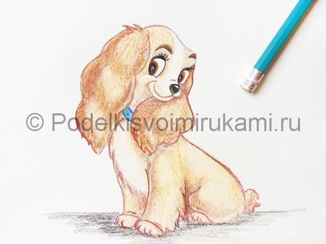 Рисуем собаку цветными карандашами - фото 26.