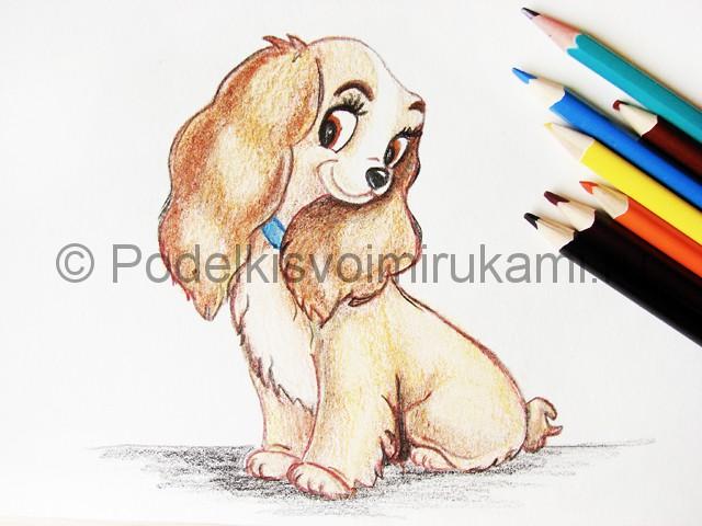 Рисуем собаку цветными карандашами - фото 27.