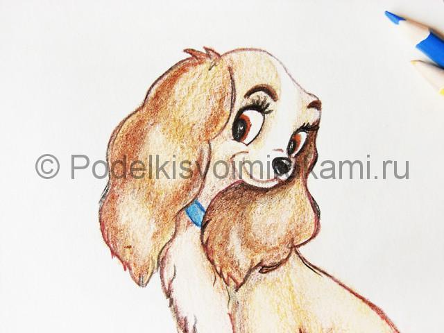 Рисуем собаку цветными карандашами - фото 28.