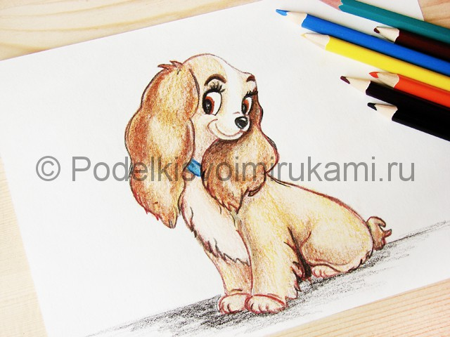 Рисуем собаку цветными карандашами - фото 29.
