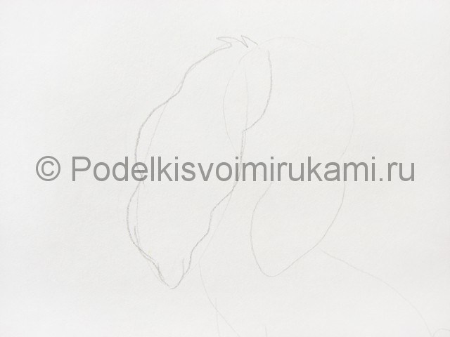Рисуем собаку цветными карандашами - фото 3.