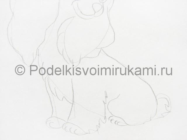 Рисуем собаку цветными карандашами - фото 5.