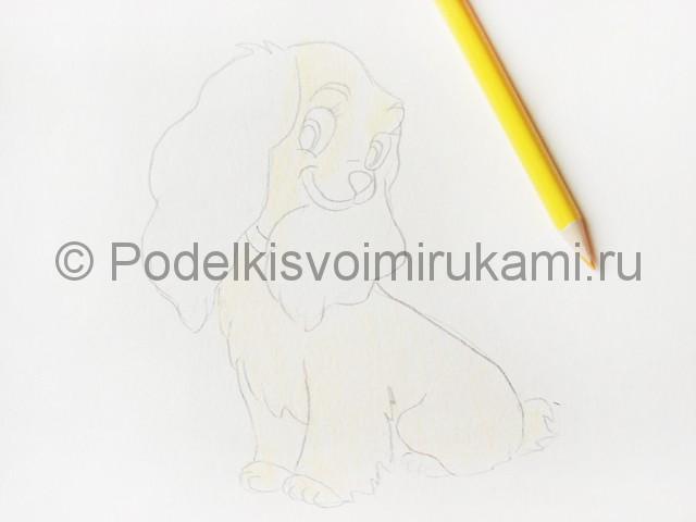 Рисуем собаку цветными карандашами - фото 8.