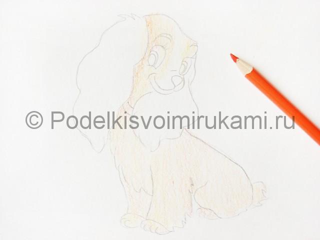 Рисуем собаку цветными карандашами - фото 9.