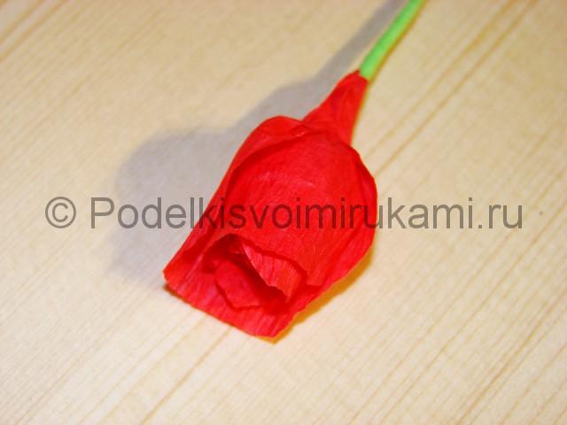 Изготовление розы из гофрированной бумаги - фото 14.