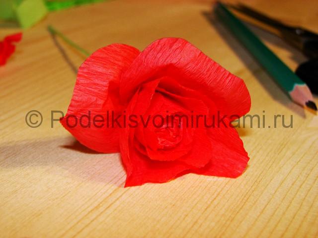 Изготовление розы из гофрированной бумаги - фото 16.