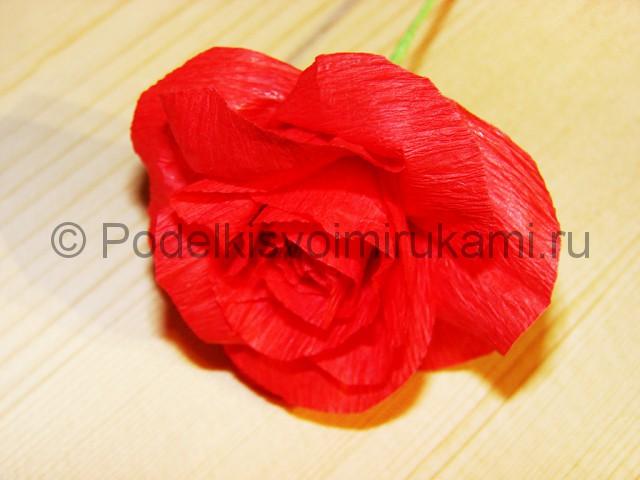 Изготовление розы из гофрированной бумаги - фото 19.