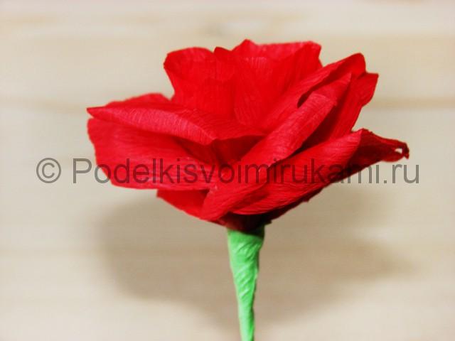 Изготовление розы из гофрированной бумаги - фото 22.