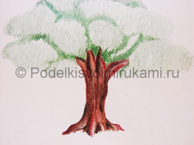 Рисуем дерево цветными карандашами - фото 14.