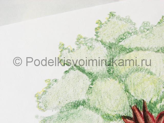 Рисуем дерево цветными карандашами - фото 21.