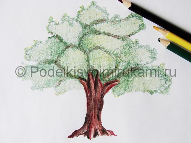 Рисуем дерево цветными карандашами - фото 24.