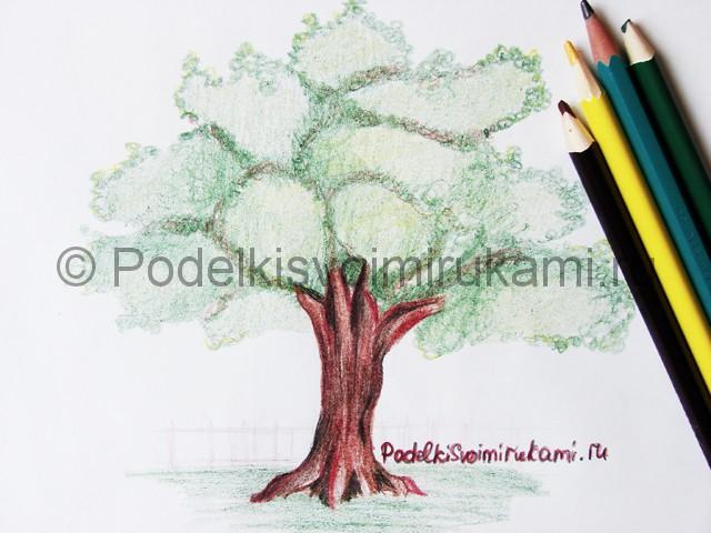 Рисуем дерево цветными карандашами - фото 26.