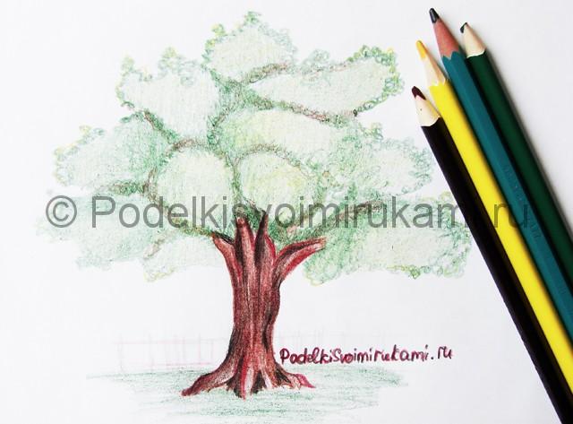 Рисуем дерево цветными карандашами - фото 27.