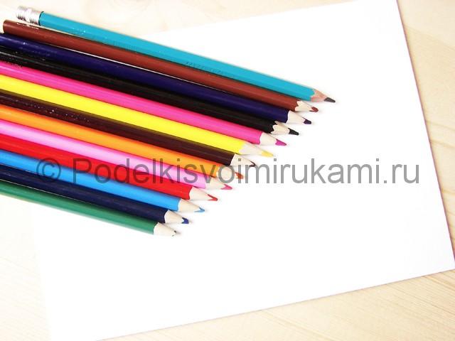 Рисуем бабочку цветными карандашами - фото 1.