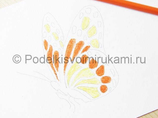 Рисуем бабочку цветными карандашами - фото 10.