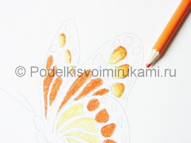 Рисуем бабочку цветными карандашами - фото 11.