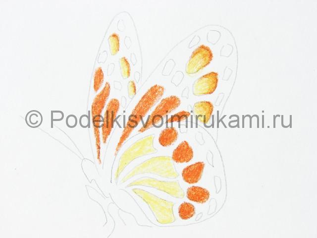 Рисуем бабочку цветными карандашами - фото 12.