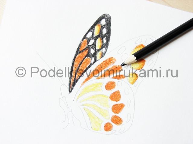 Рисуем бабочку цветными карандашами - фото 13.