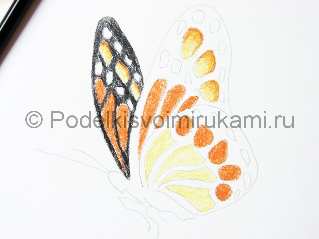 Рисуем бабочку цветными карандашами - фото 14.