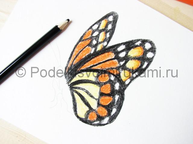 Рисуем бабочку цветными карандашами - фото 16.