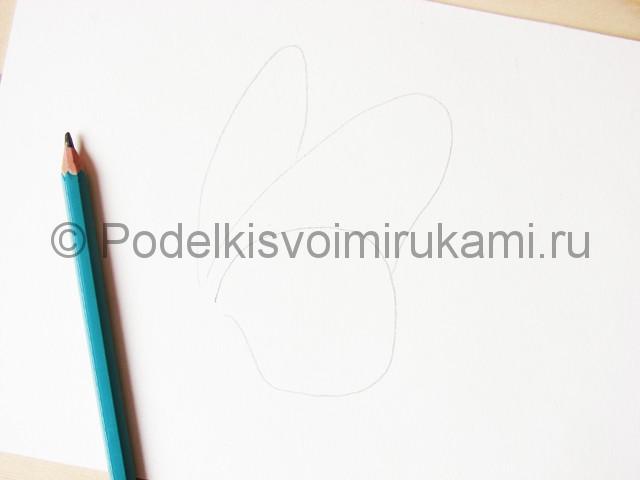 Рисуем бабочку цветными карандашами - фото 2.