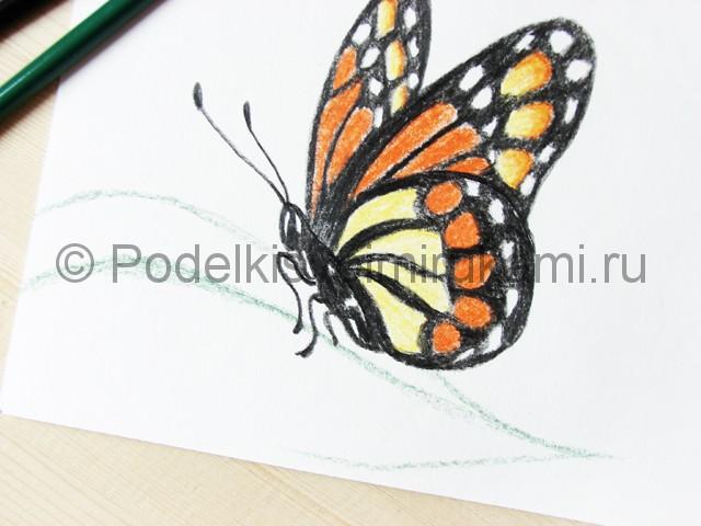 Рисуем бабочку цветными карандашами - фото 20.