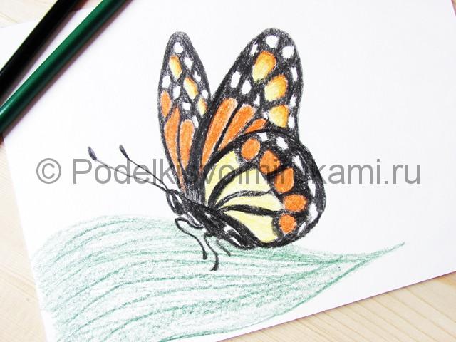 Рисуем бабочку цветными карандашами - фото 21.
