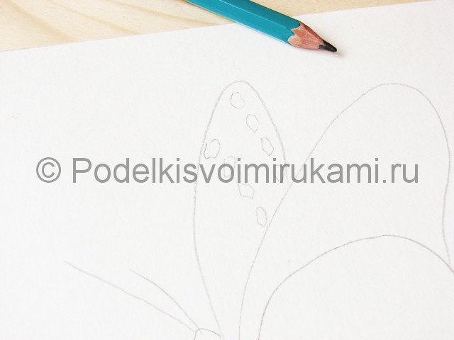 Рисуем бабочку цветными карандашами - фото 4.