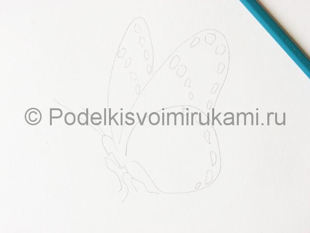 Рисуем бабочку цветными карандашами - фото 5.