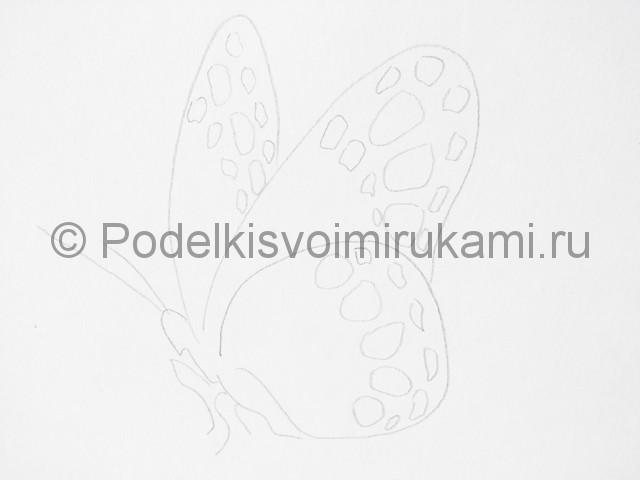 Рисуем бабочку цветными карандашами - фото 6.